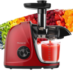 Best Affordable Juicer 2021 - Top Rated & Budget Friendly