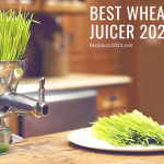 best wheatgrass juicer 2021